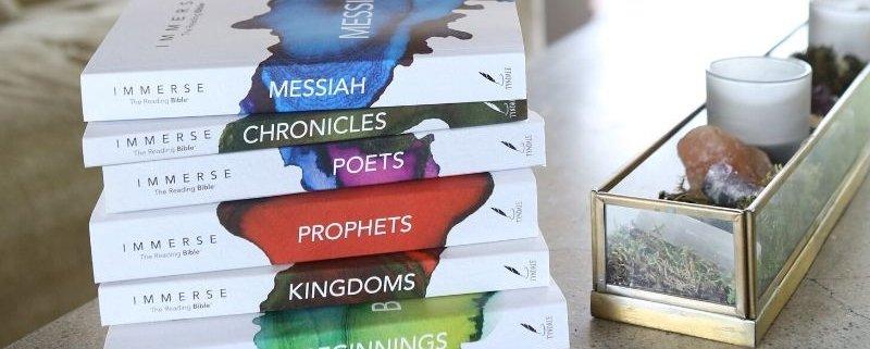 Immerse Bible Set